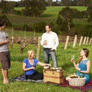 Vasse Felix vineyard picnic Margaret River